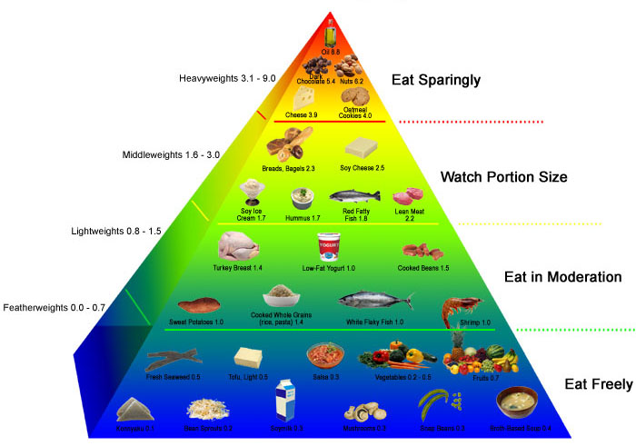 pyramída kalorickej hustoty