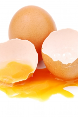vajcia 1